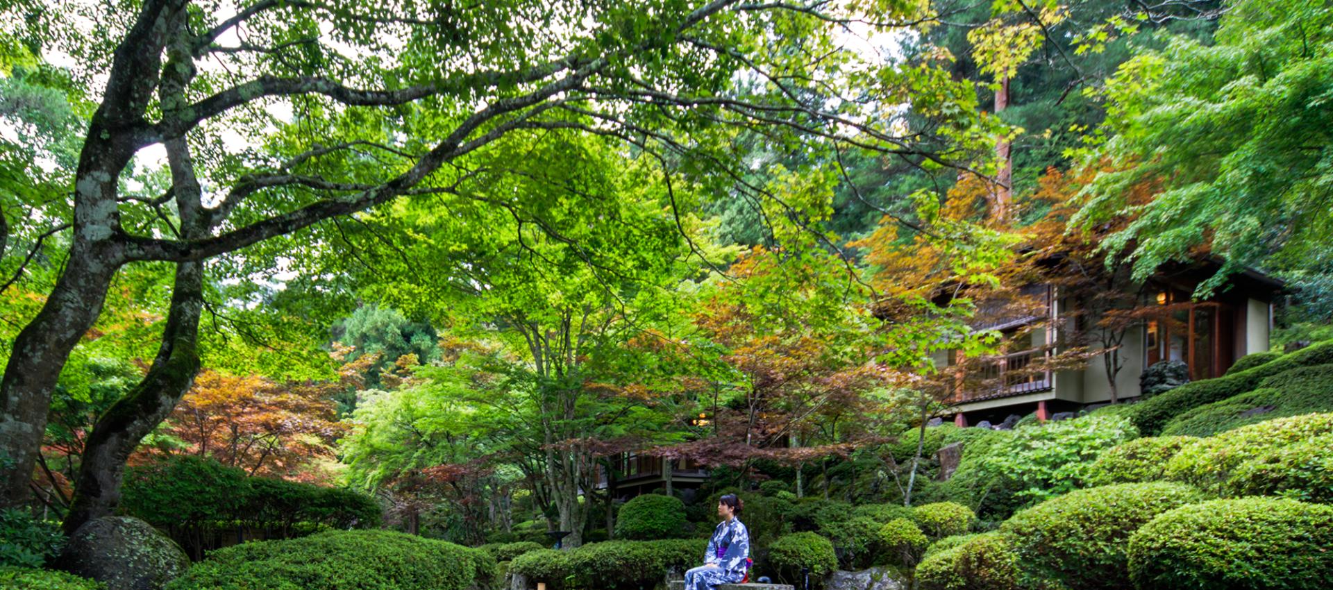 Como realmente disfrutar de un Jardín Japonés